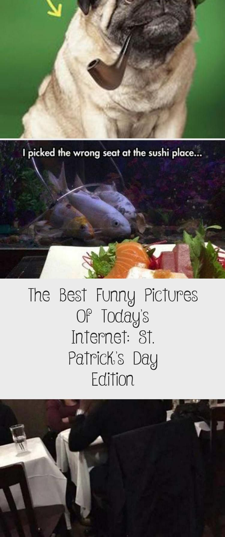 The Best Funny Pictures Of Today8217s Internet St Patrick8217s Day Edition The Best Funny Pictures Of Todays Internet