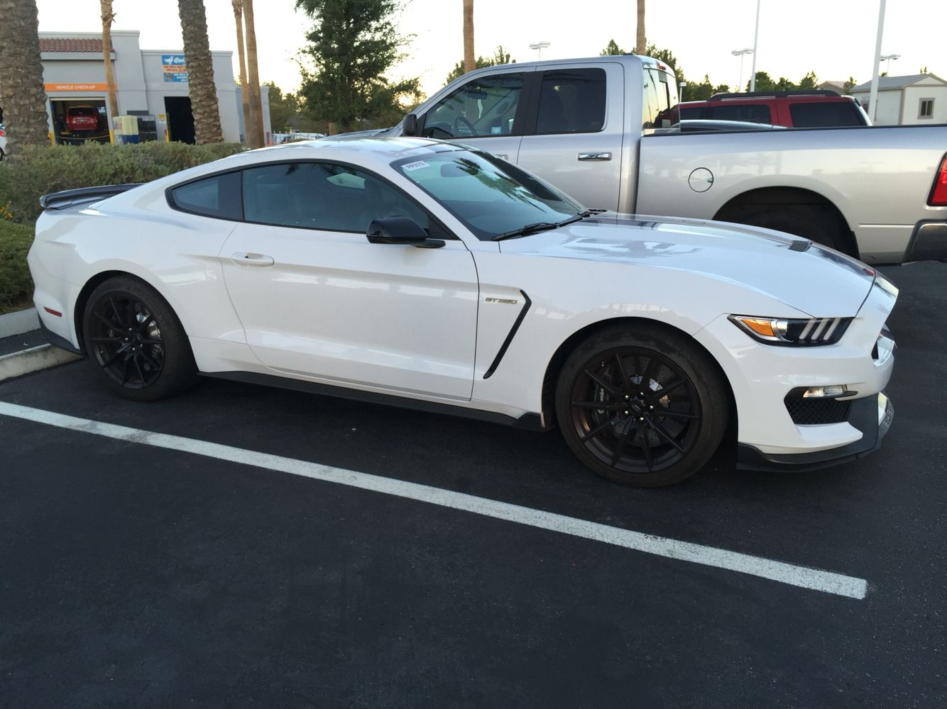 2016 Mustang Shelby Gt350 I Love The White And Black So Sexy