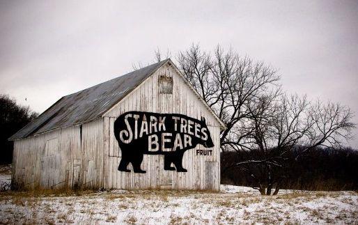 Bear Barn