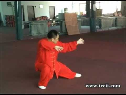 Chen Tai Chi New Frame And Old Frame By Master Chen Xili   YouTube