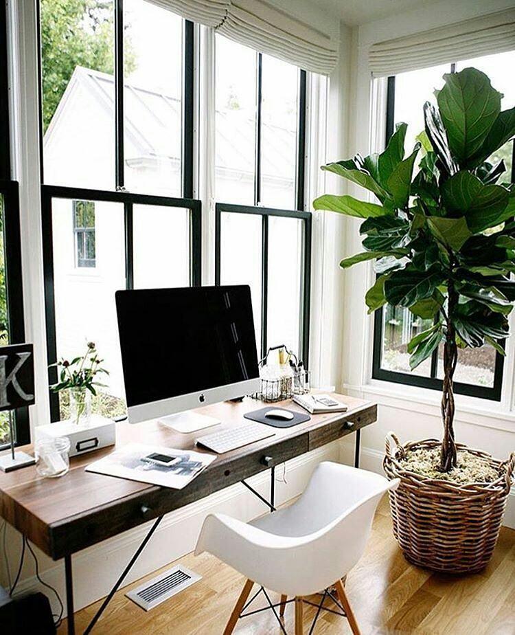 Un bureau parfait pour les auto entrepreneur et freelance qui travaillent de chez eux espace optimisé et luminosité