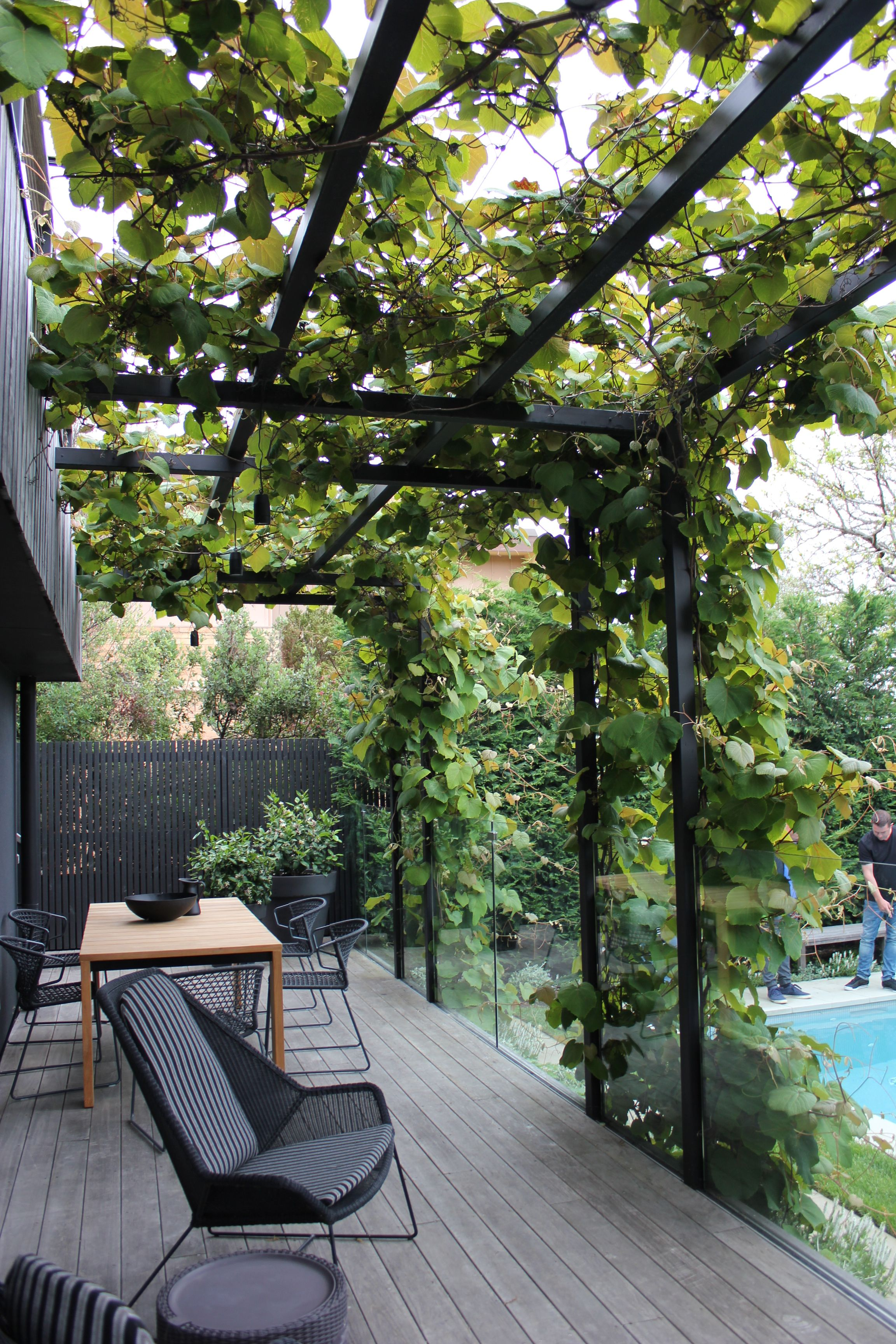 Greenscape Filter The Light With Greenscaope Idees Pergola Terrasse Jardin Amenagement Jardin