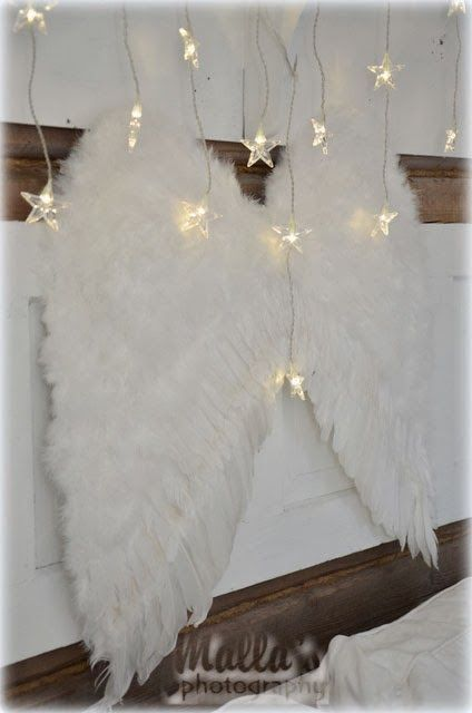white feathers and stars