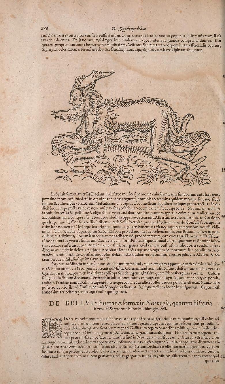(1602) -- Conradi Gesneri -  medici Tigurini Historiae animalium liber primus de quadrupedibus viuiparis : opus philosophis, medicis, grammaticis, philologis, poëtis, & omnibus rerum linguarumq́ue variarum studiosis, vtilissimum simul iucundissimumq́ue futurum