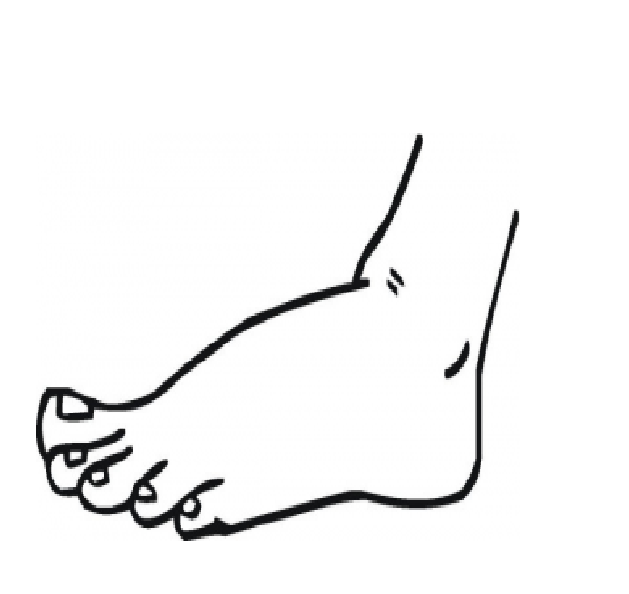 Foot Coloring Page Coloring Pages Anatomy Coloring Book Clip