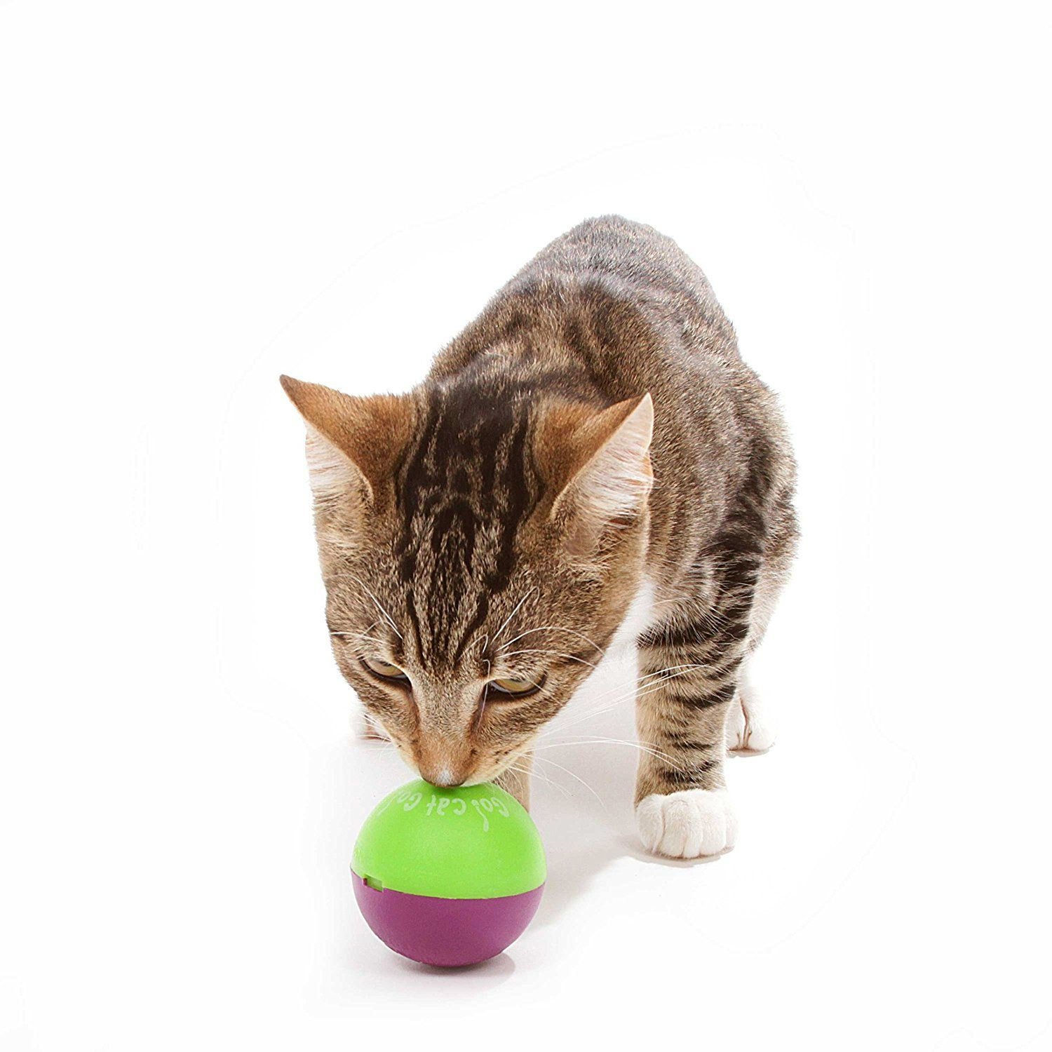Gocat Go Play N Treat Ball Dispenser Review In 2020 Cat Toys Interactive Cat Toys Pet Toys