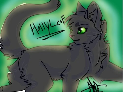 Hollyleaf Warrior Cats