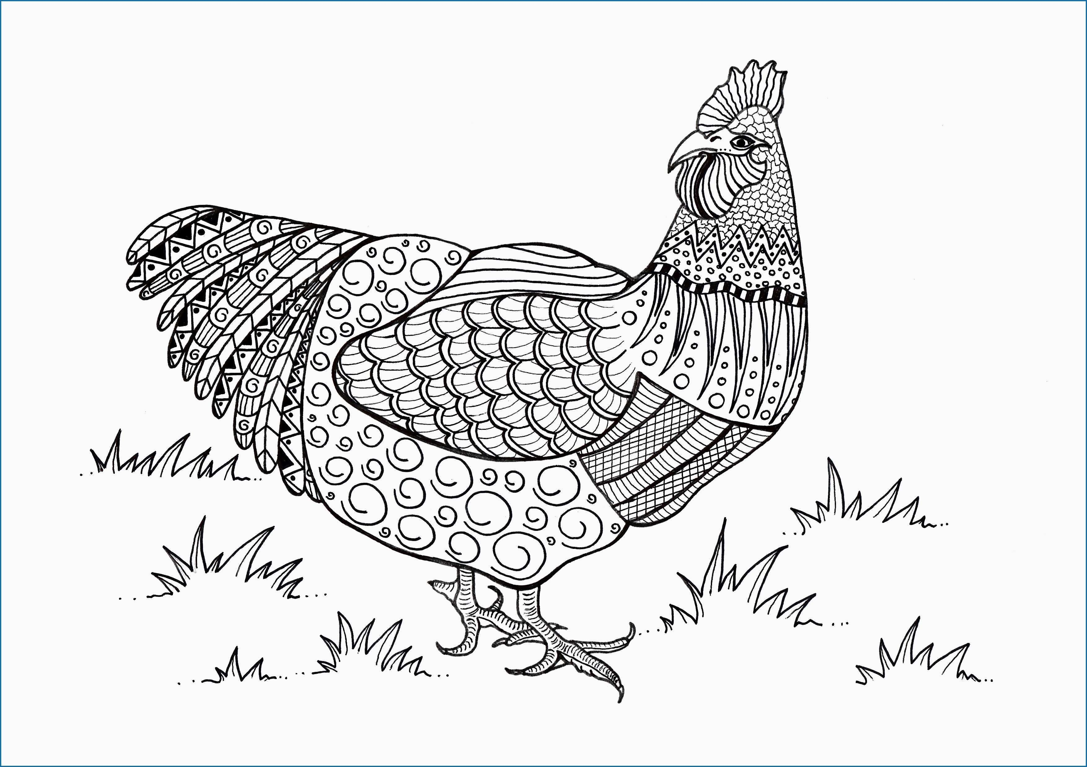 Pin On Ideas For Nancy S Chicken Themed Back Porch