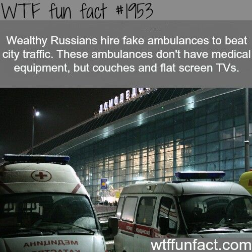 WTF Fun Fact Random Facts Pinterest Wtf Fun Facts Random - 10 interesting facts about russia
