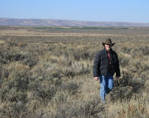 See! We have trees in Central Washington, people sometimes refer to them as Sagebrush.