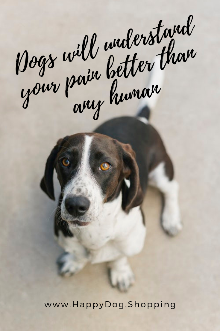 Pin On Dog Quotes For Dog Lovers