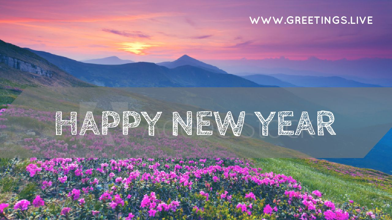 new year greetings live 2018 sunset