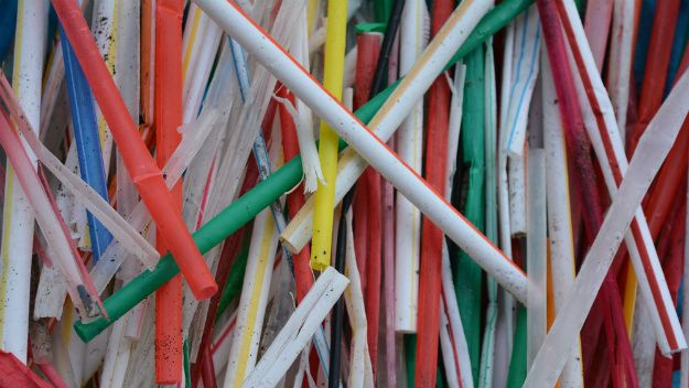 """The """"Straws Upon Request"""" campaign aims to replace plastic straws with compostable paper straws in an effort to help the environment."""