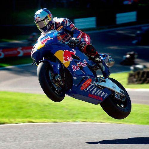 Honda Red Bull Moto GP Picture
