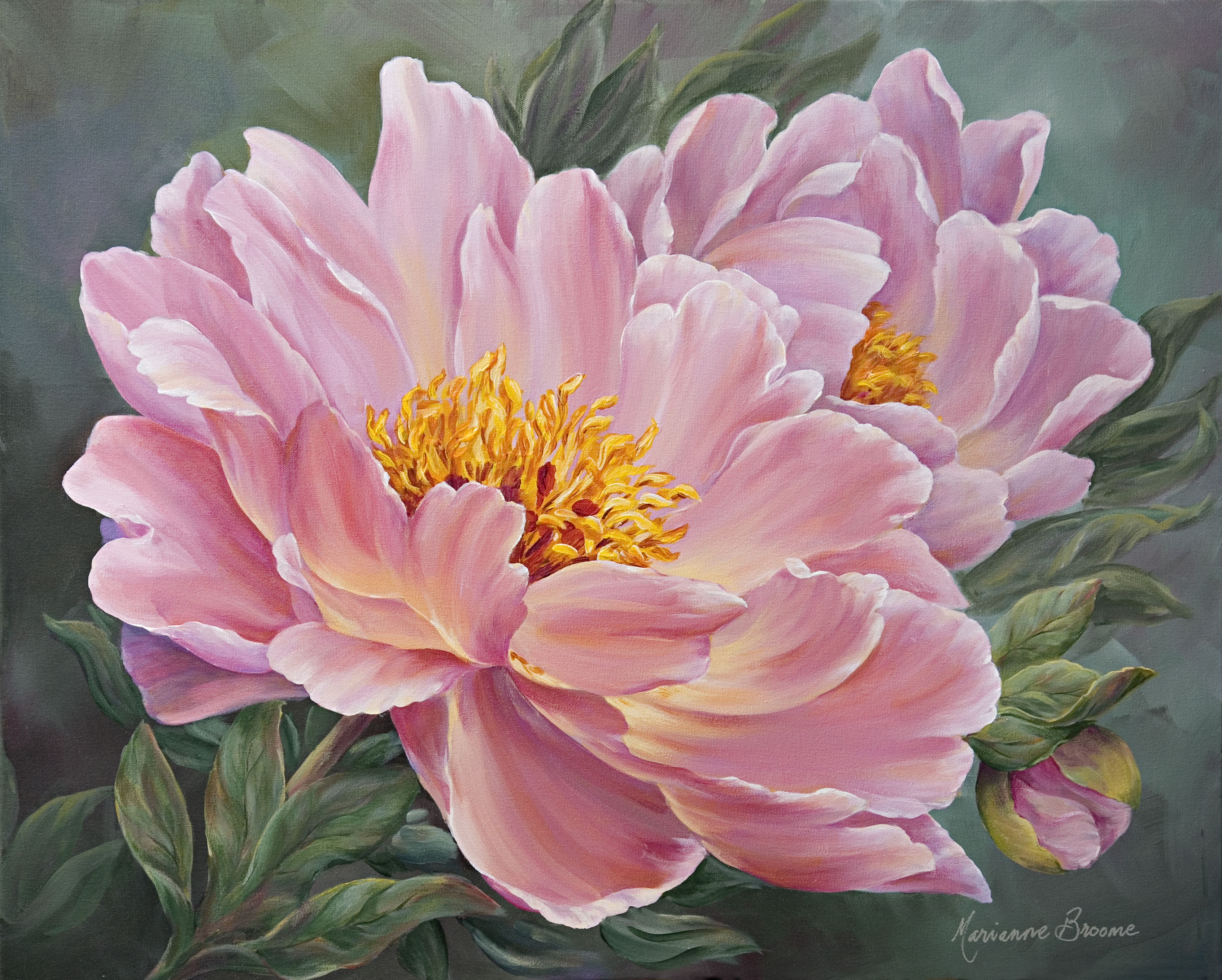 Peony Glow Marianne Broome Flower Painting Flower Art