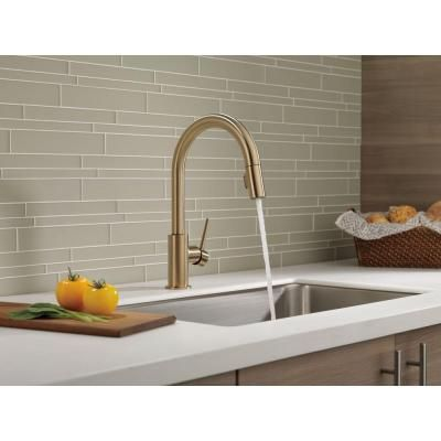 Delta Trinsic Single Handle Pull Down Sprayer Kitchen Faucet In Champagne Bronze Featuring Magnae