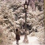 Narnia   Narnia Fans - Part 67