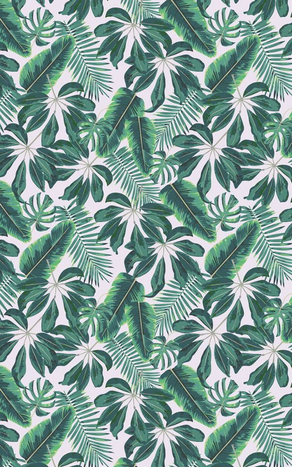 Mixed Tropical Leaves Wallpaper Mural | Hovia