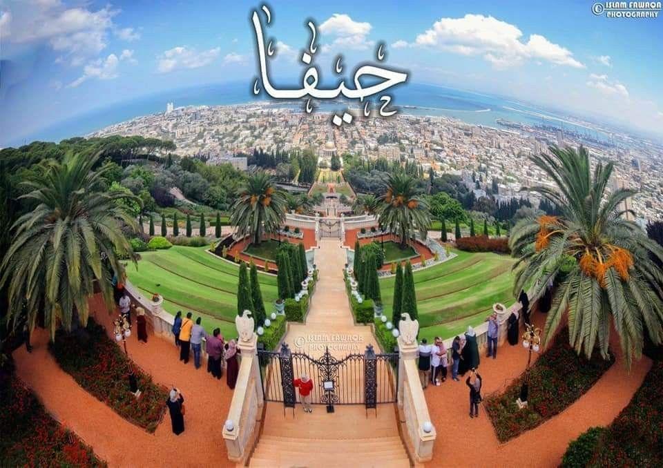 Pin By فلسطينية ولي الفخر On فلسطين يا أمي Dolores Park Travel Park