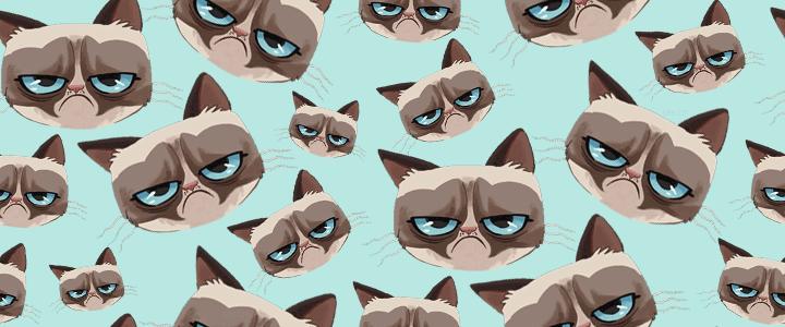 Cat Backgrounds Tumblr