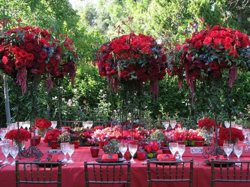 Red roses everywhere