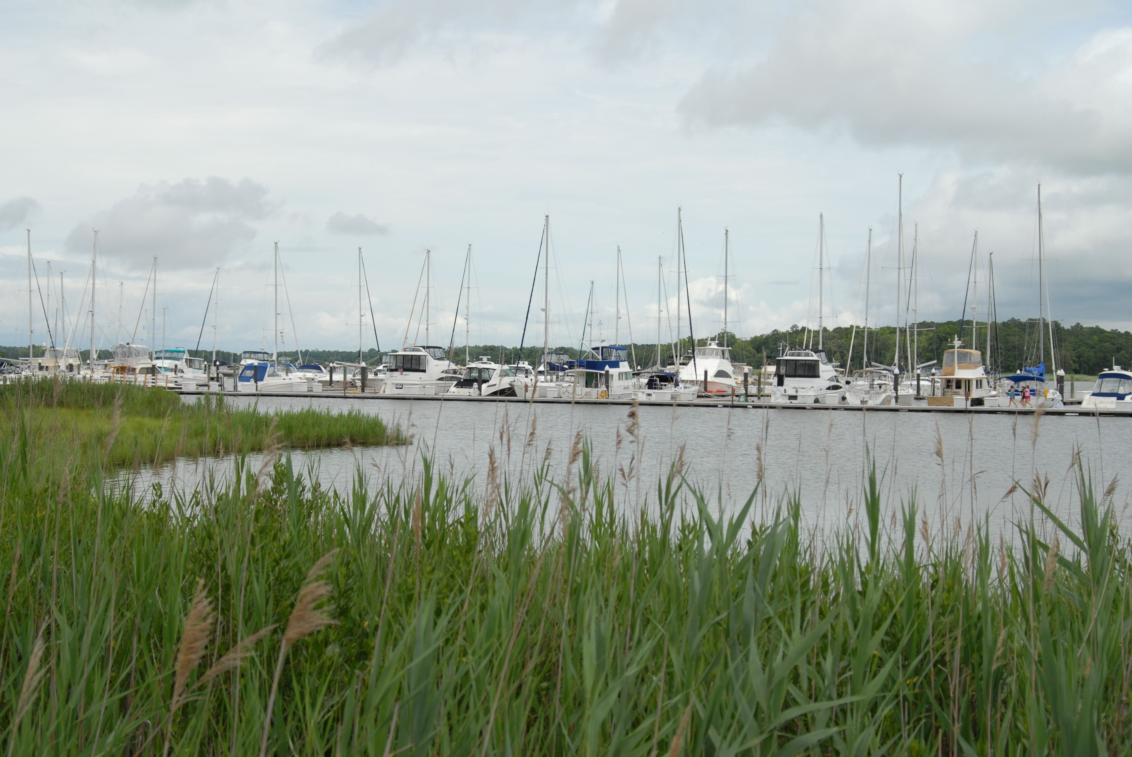 Our Marina is located right next to the beautiful Inn for slip holders or transients. Inn at Osprey Point. Rock Hall. Chesapeake Bay. Eastern Shore. Maryland.