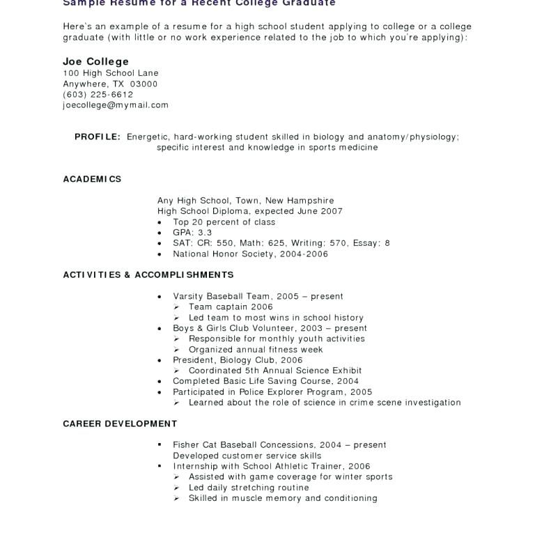 Sample Resume With No Work Experience College Student Essay
