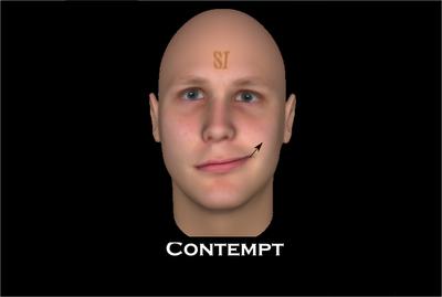 Phrase simply contempt facial expression