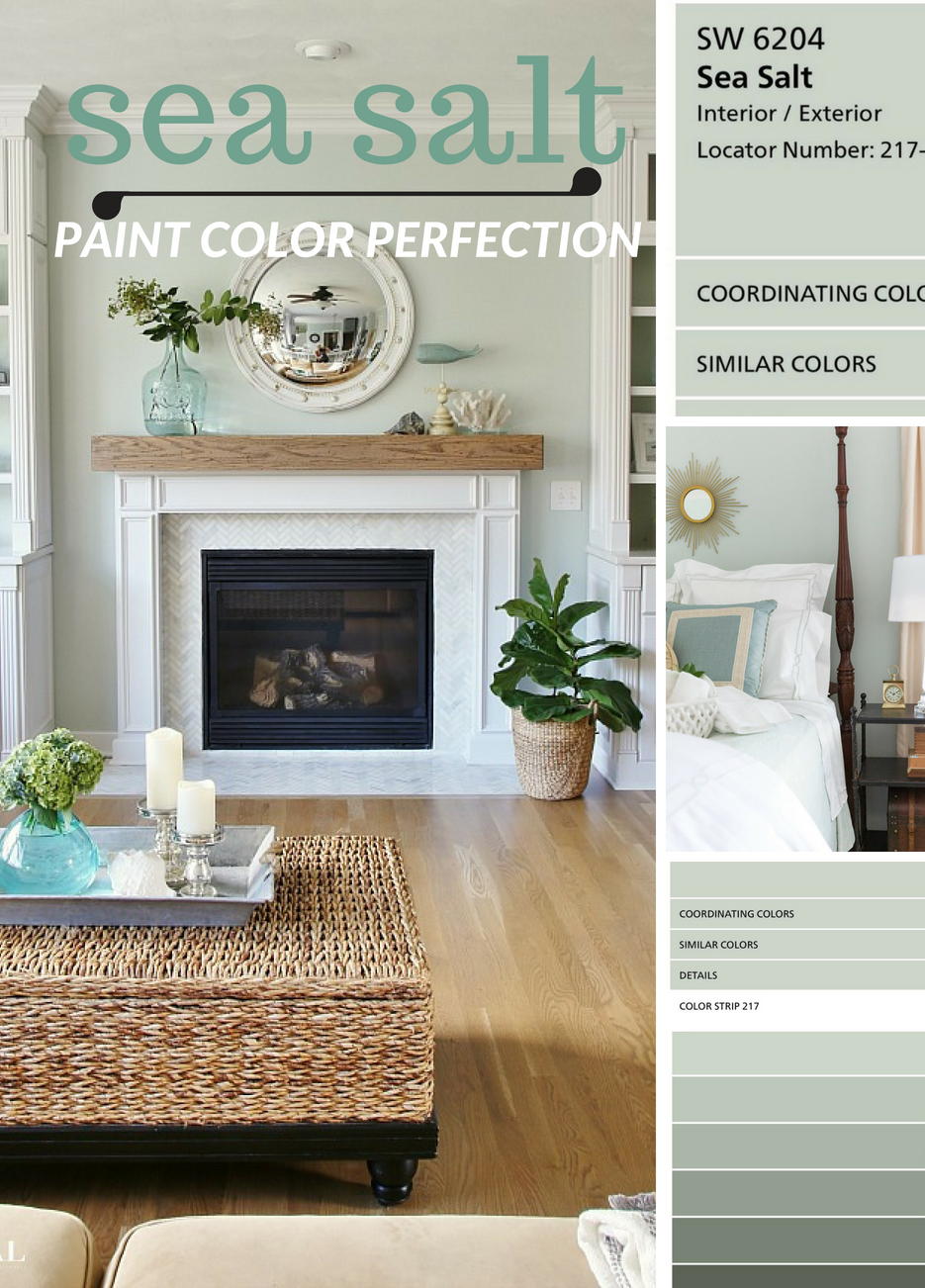 Why I Love Sherwin Williams Sea Salt Paint Color Paint Colors