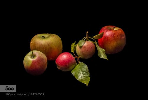 A large apple family by WolfgangWerner1  IFTTT 500px apple big black and white color color on black family large orange red yellow