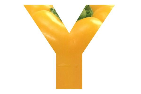 Y - yellow