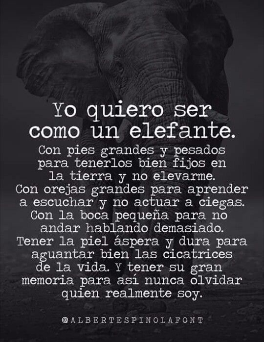 Yo Quiero Ser Como Un Elefante Juani Frases
