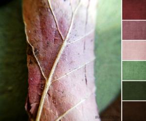 pink leaf palette