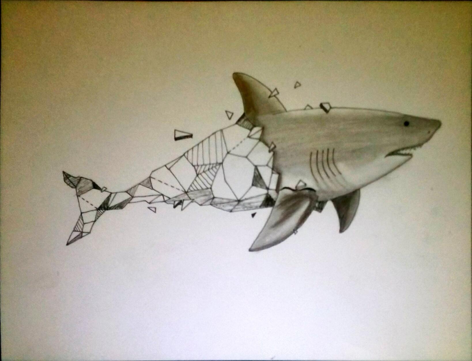 Tiburón blanco geometrizado | Tatuajes | Pinterest | Tiburones ...