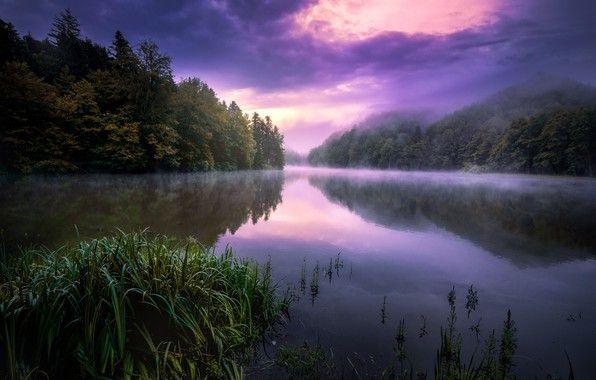 Обои лето, ночь, туман, озеро картинки на рабочий стол ...