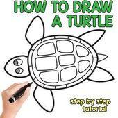 Wie zeichnet man eine Schildkröte Schritt für Schritt ...