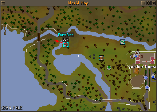 Move fairy ring DJR to the other side of the river. | RuneSwap OSRS ...