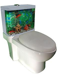 Its Part Toilet Fish Tank