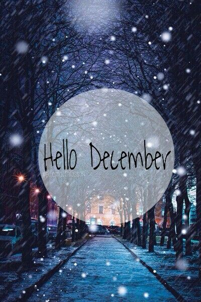 december is here winter christmas
