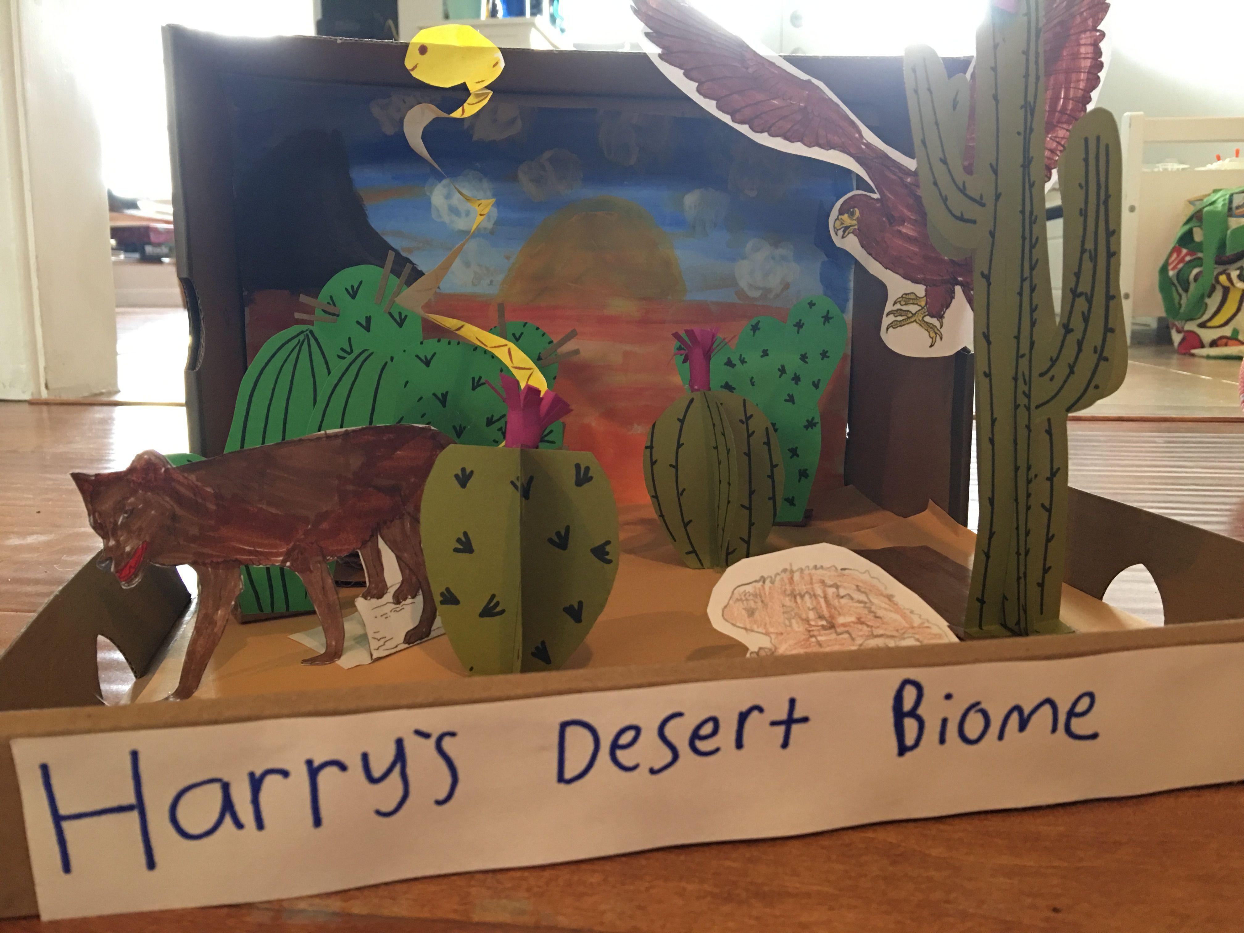 Harry\'s diorama. Desert Biome project. | biomes | Pinterest | Biomes