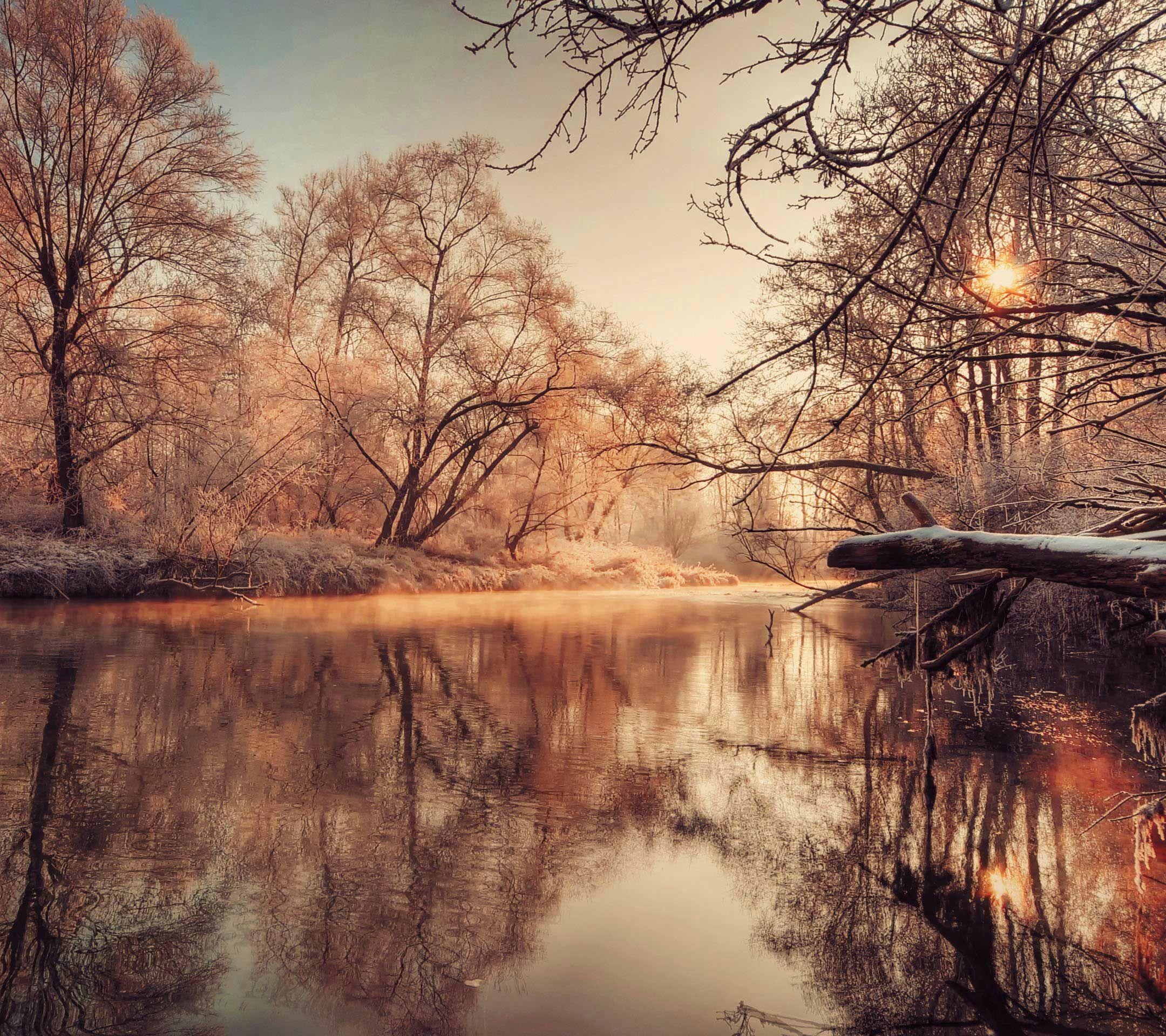 autumnal lake xperia z2 wallpaper