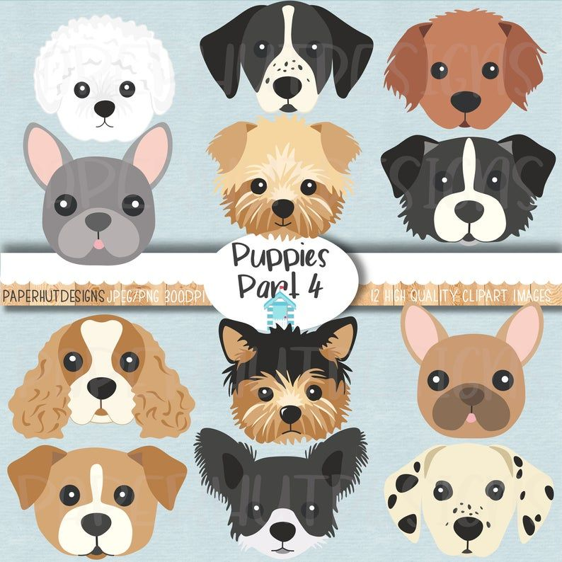 Dog Faces Clipart Puppy Dog Facesdog Illustrationspuppy Clip Etsy In 2021 Puppy Clipart Dog Face Dog Illustration