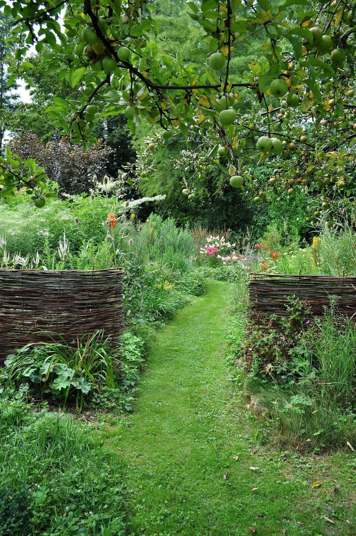 Im Garten Wachst Essbares Unkraut Haus Und Beet Beet Blog Essbares Garden Design Ideas Garten Haus Und Unkr In 2020 Englischer Garten Garten Hinterhof Garten