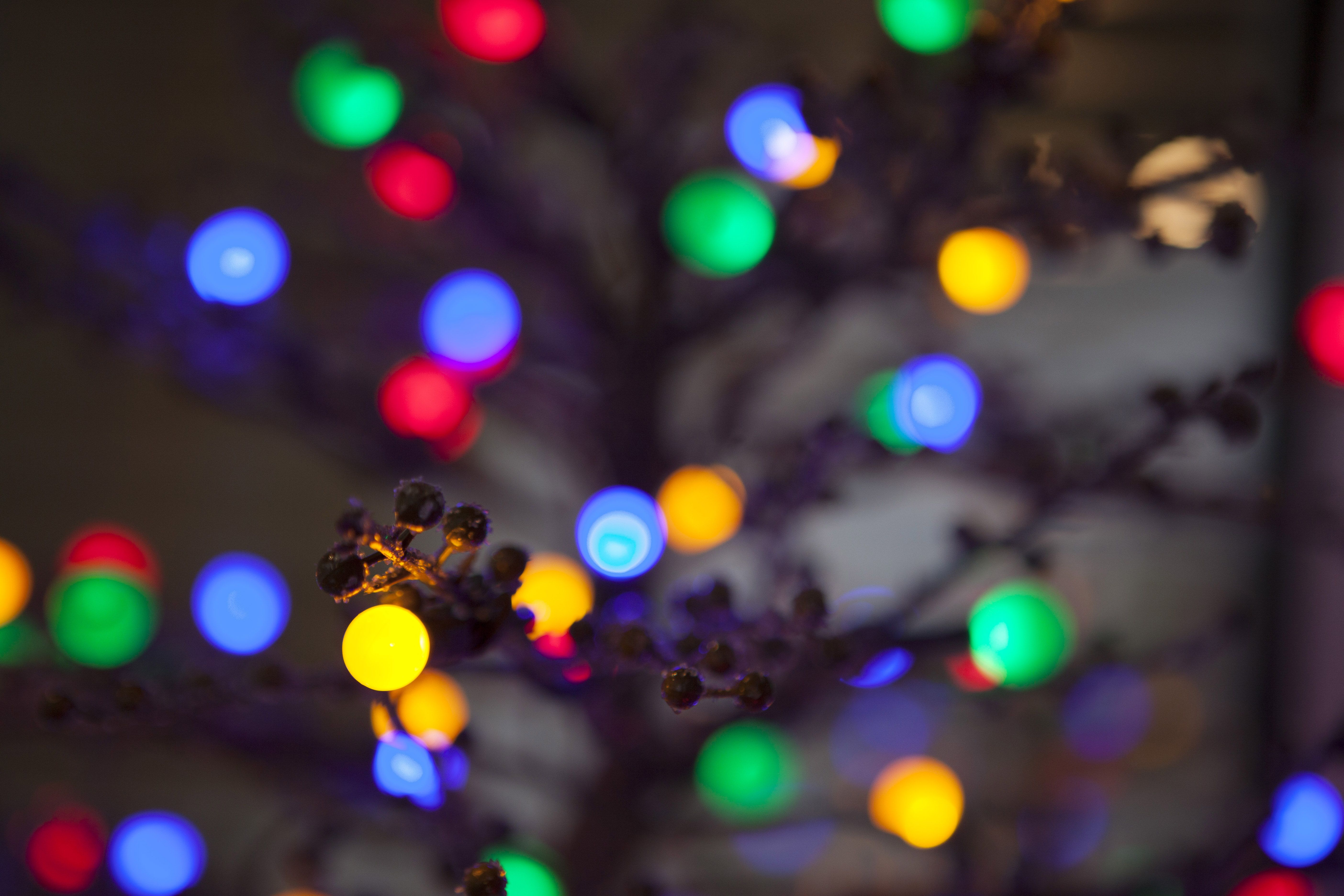 Bright And Colorful Christmas Lights Will Put You In The