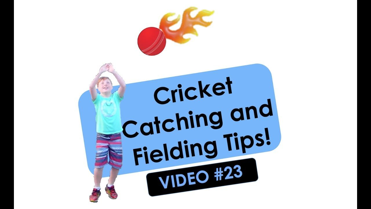 Cricket Catching And Fielding Tips For Kids Video 23 All Ages Illawarra Education Foundation Education Foundation Postive Thoughts Educational Videos