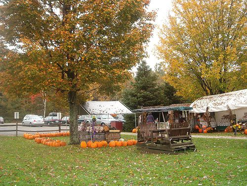 Fall - Vermont Country Store