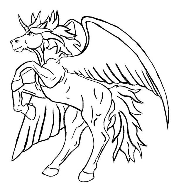 Unicorn with wings coloring pages 600x648