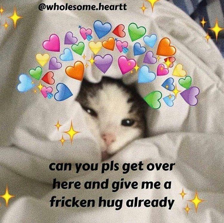 Tag Your Crush Cute Memes Cute Love Memes Love Memes