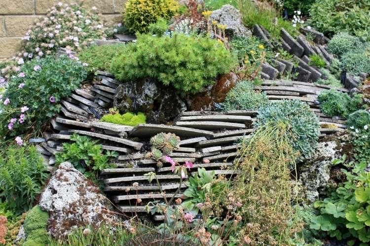 Plantes et aménagement jardin méditerranéen – 79 idées | JARDINS ...