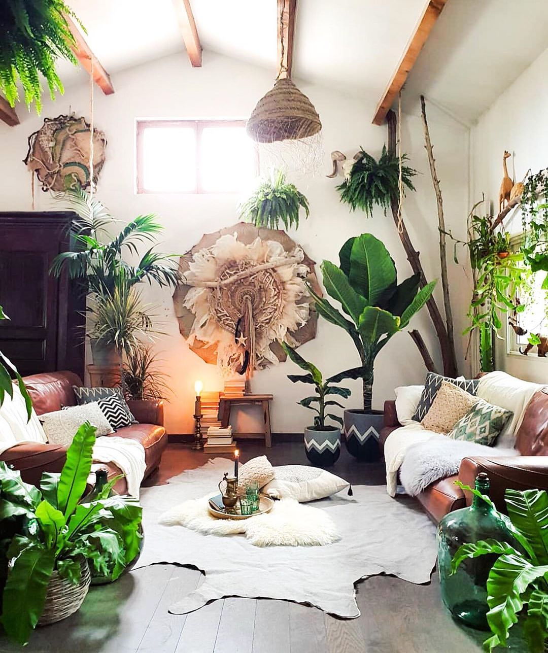 Pin On Nesting Jungle living room ideas